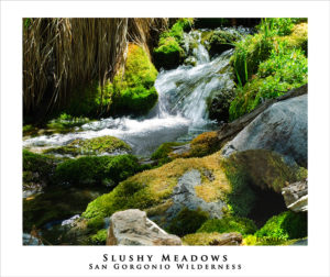 Slushy Meadows stream