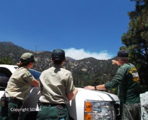 Lake Fire 22 June 2015
