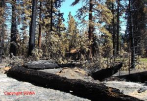 Lake Fire Horse Meadows July 2015 2