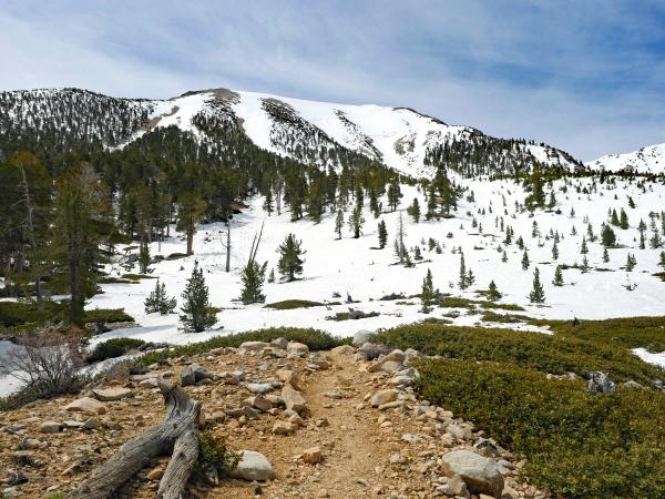 Trail flats and north face of San Gorgonio