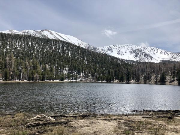 San Gorognio and Dry lake