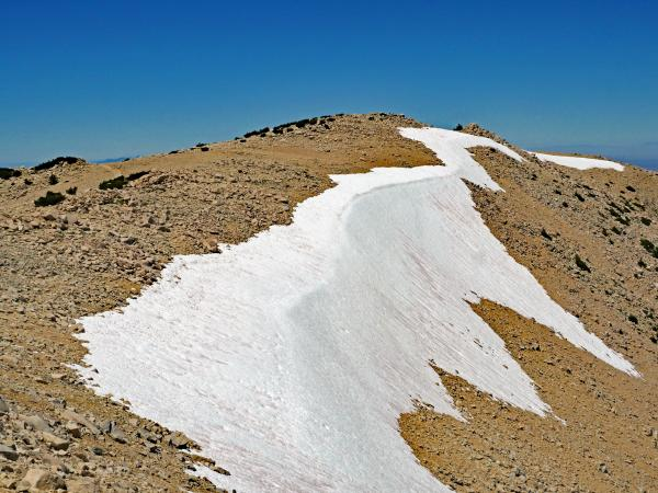 Big Draw snow pack, Jul 20
